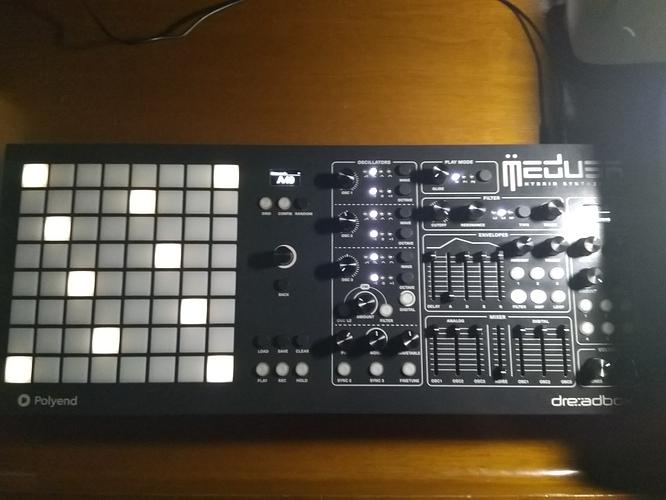 medusa8