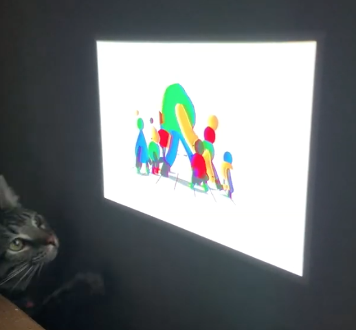 cat_and_video